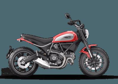 Ducati icon